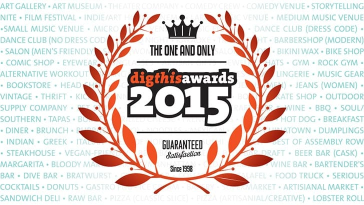 DIGTHIS AWARDS 2015: THE WINNERS